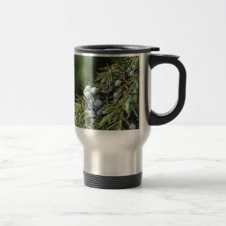 Juniperus berries on a tree travel mug