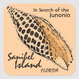 Junonia shell Sanibel Island Florida stickers