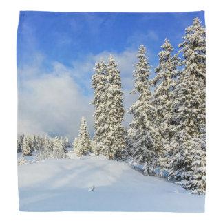 Jura mountain in winter, Switzerland Head Kerchief