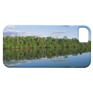 Juruena, Brazil. Forested river bank reflected iPhone 5 Covers