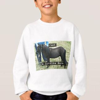 Just a little horse sweatshirt