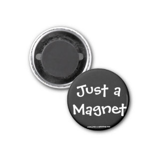 Just a Magnet
