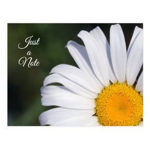 Just a Note Offset Daisy Postcard
