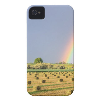 Just_Another_Country_Rainbow Case-Mate iPhone 4 Case