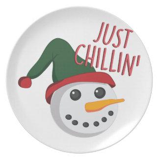 Just Chillin Dinner Plate