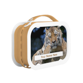 Just Chillin Personalised Lunchbox