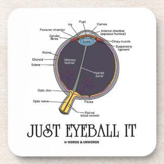 Just Eyeball It (Human Eye Anatomy) Coaster