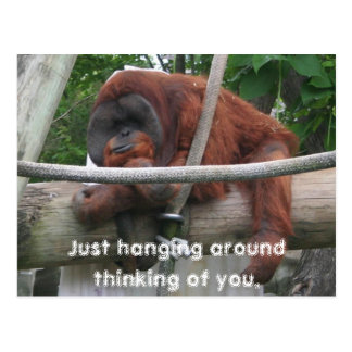 Just hanging around thinking of you. postcard