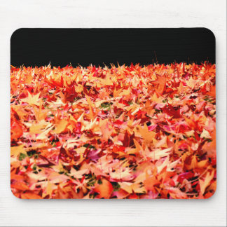 Just in Time for Autumn - Maple Leaves Mouse Pad