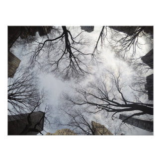 Just look up photo print