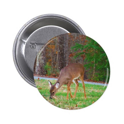 Just  Lost Spots, Baby Deer Buttons