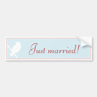 """Just married!"" more carsticker into aque with Bir Bumper Sticker"