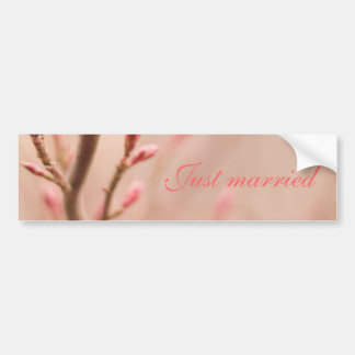 Just married spring dreams bumper sticker
