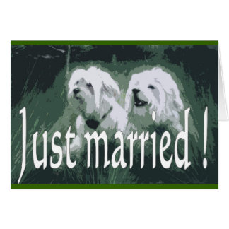 Just marry comics card