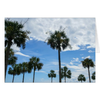 Just Palm Trees Card