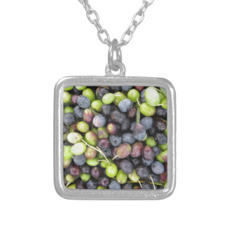 Just picked olives background during harvest time silver plated necklace
