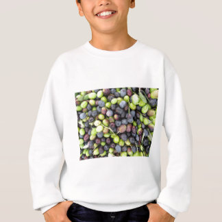 Just picked olives background during harvest time sweatshirt