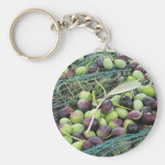 Just picked olives on the net during harvest time basic round button keychain
