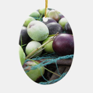 Just picked olives on the net during harvest time ceramic ornament