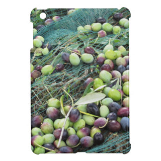 Just picked olives on the net during harvest time iPad mini cases