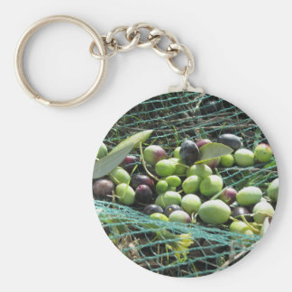 Just picked olives on the net during harvest time keychain