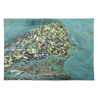 Just picked olives on the net during harvest time placemat