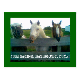 Just saying, hay,howdy, dude! postcard