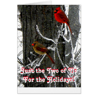 Just the Two of Us Holiday Card