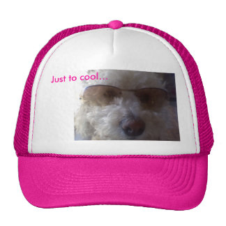 Just to cool... trucker hat