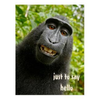"""Just To Say Hello"" Gorilla Postcard"