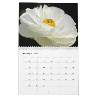 JustBetweenSisters Collections Calendars