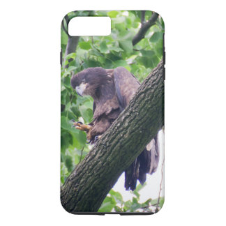 Juvenile Bald Eagle iPhone 7 Plus Case