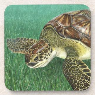 Juvenile Green Turtle Coasters