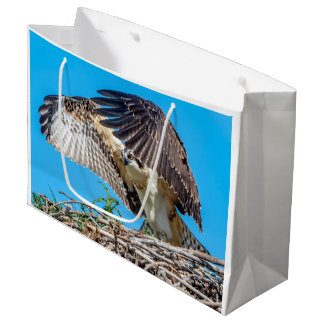 Juvenile Osprey in the nest Large Gift Bag