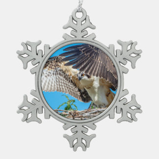 Juvenile Osprey in the nest Pewter Snowflake Ornament