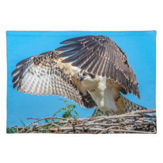 Juvenile Osprey in the nest Placemat