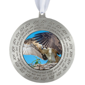 Juvenile Osprey in the nest Round Pewter Ornament