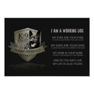 K-9 Unit GSD -Working German Shepherd Dog Poster