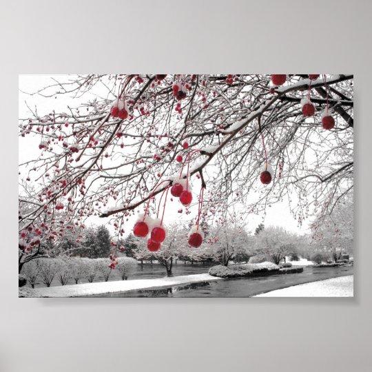 K&K Winter Berry Poster