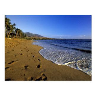 Kaanapali beach, Maui, Hawaii, USA Postcard
