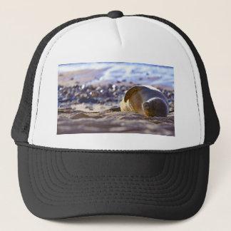 Kaimana Mug C310BECF-6742-4AB9-A670-07E3CFD639B5 Trucker Hat