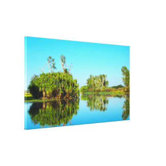 Kakadu reflections canvas print