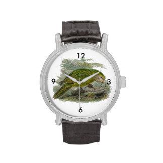 Kakapo Green Parrot Vintage Illustration Wristwatches