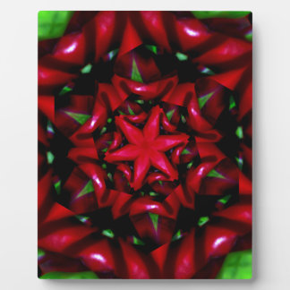 kaleido  flower green and red design plaque