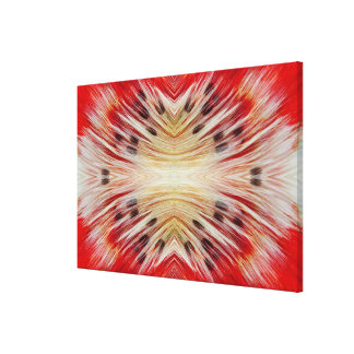 Kaleidoscope Bearded Barbet design Canvas Print