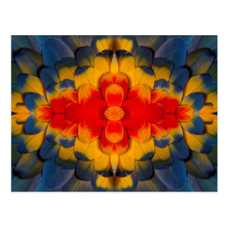 Kaleidoscope Scarlet Macaw feather Postcard