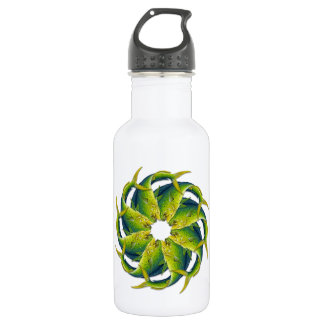Kaleidoscopic Dolphinfish Water Bottle