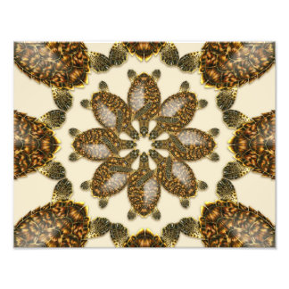 "Kaleidoscopic Hawksbill Sea Turtle 14"" x 11"" Print Photo"