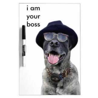kangal hund mit hut und brille memoboards