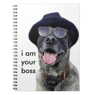 kangal hund mit hut und brille spiral notizbuch